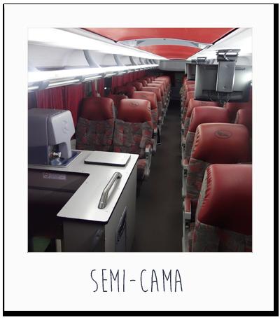 carnets de voyage argentine 3 salta la linda et mendoza ppmax no sekai. Black Bedroom Furniture Sets. Home Design Ideas
